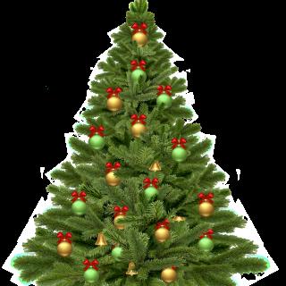 Ouverture salle – vacances Noël 2018